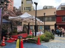 糸川桜まつり熱海温泉ホテル旅館協同組合主催「謝恩デー」