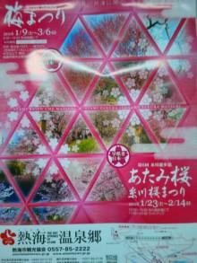 糸川桜まつり・熱海梅園梅まつり