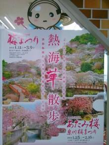 熱海梅園梅まつり 糸川桜まつり